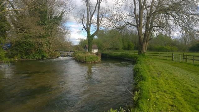 Wherwell Priory (River Test, Hampshire